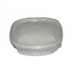 Envases 250 cc de Plástico Transparente con tapa -50 unds