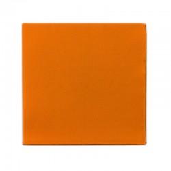 Serv. Punta Naranjas 33x33 (1 Hoja)