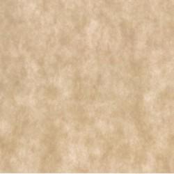 150 Manteles Newtex Crema 1x1