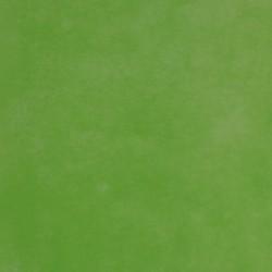 Manteles Newtex Pistacho 120x120 cm (150 unds)